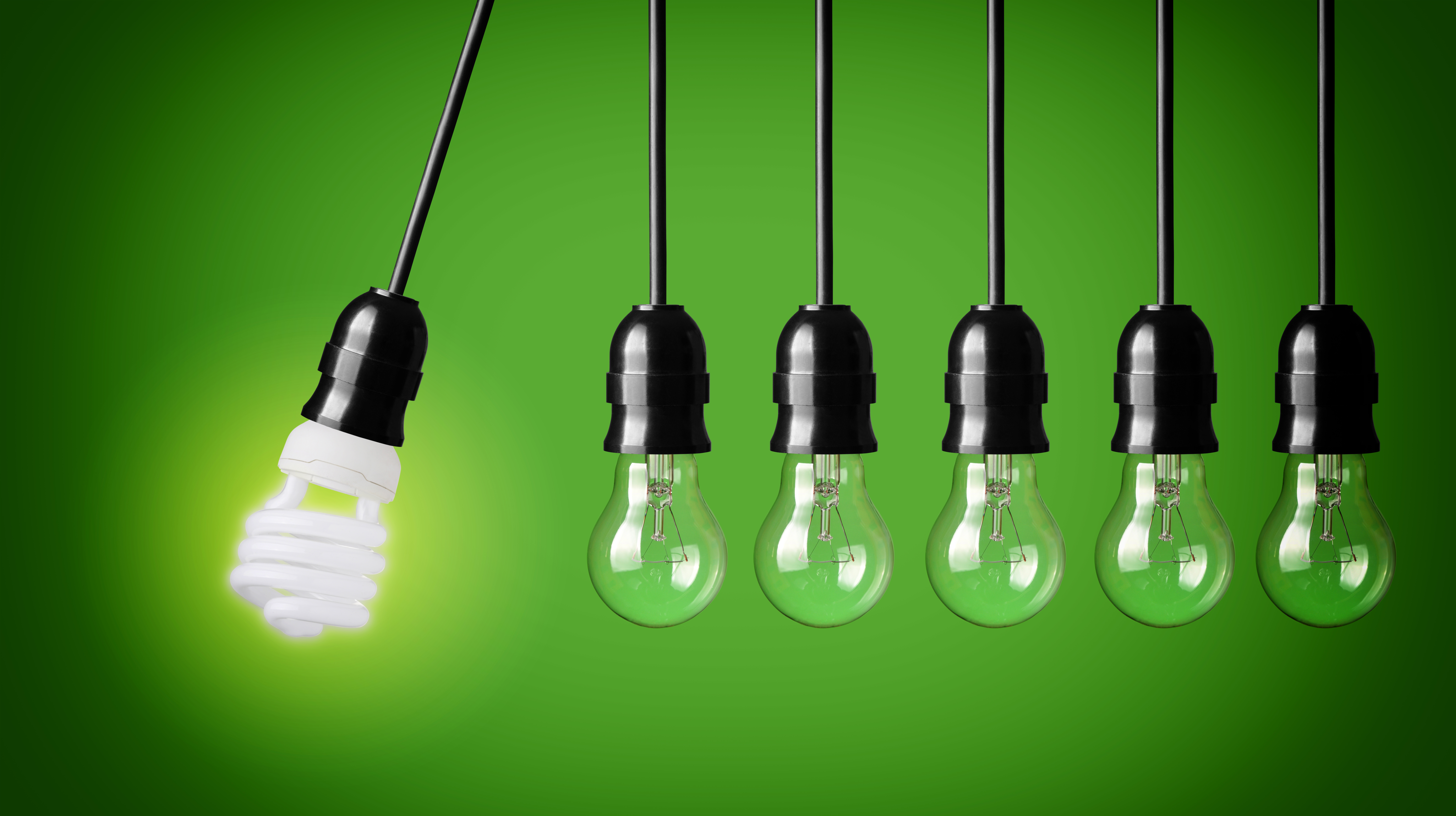 Efficient Business Management Software