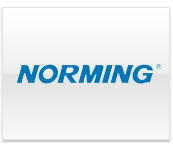 Norming logo